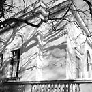 Shadows on Law Quad building, University of Michigan by jrier
