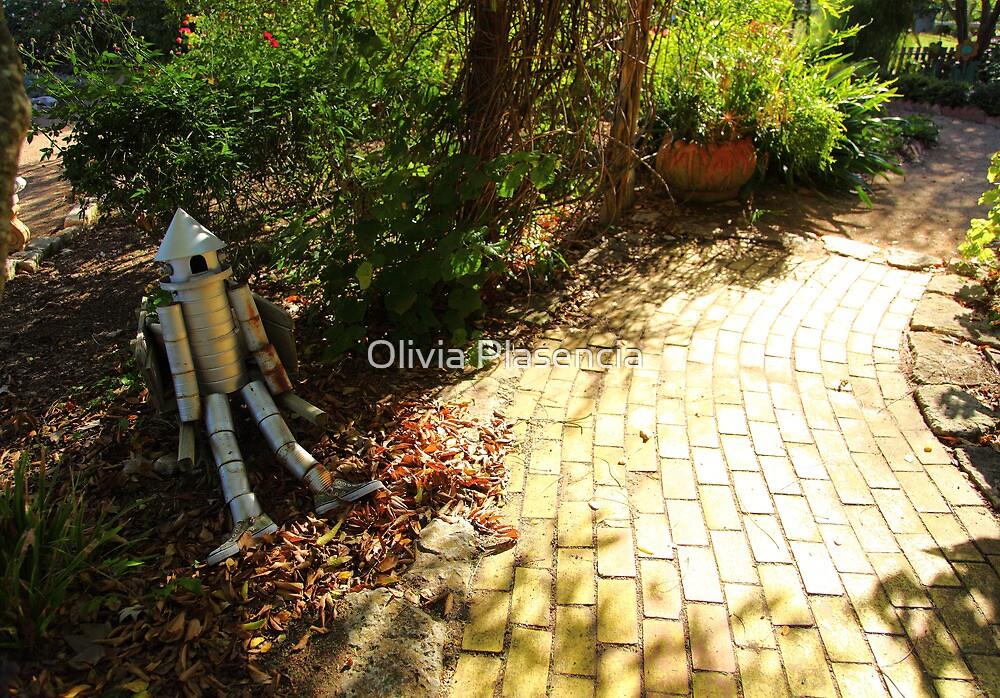 The Tin Man by Olivia Plasencia