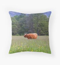 Spring In The Highlands Throw Pillow