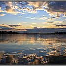 Sky in the Bay by Mikell Herrick