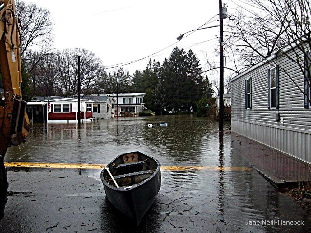 Canoe In The Road by Jane Neill-Hancock