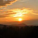 Sunrise by Cole Pickup