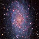 The Triangulum Galaxy by Cole Pickup