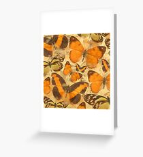 Orange Butterfly Collage Greeting Card