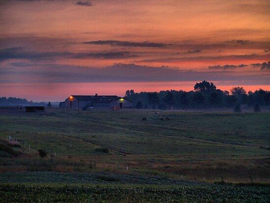 Dawn at the Horse Ranch by Scott Hendricks