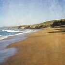 Bobby's Head Beach by Jill Ferry