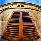 Old Spanish Window Shutters by marina63