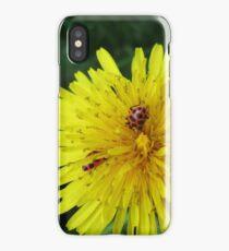 Ladybug Friends iPhone Case/Skin