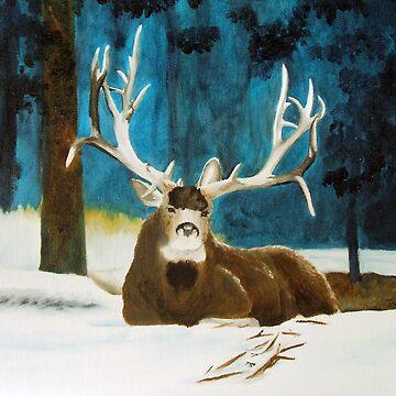 Mule Deer by BrandyHouse