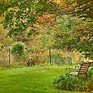 Enjoy Greene Garden by Owed To Nature