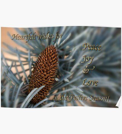 Blue atlas cedar holiday card Poster