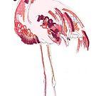 Flamingo by caseysplace