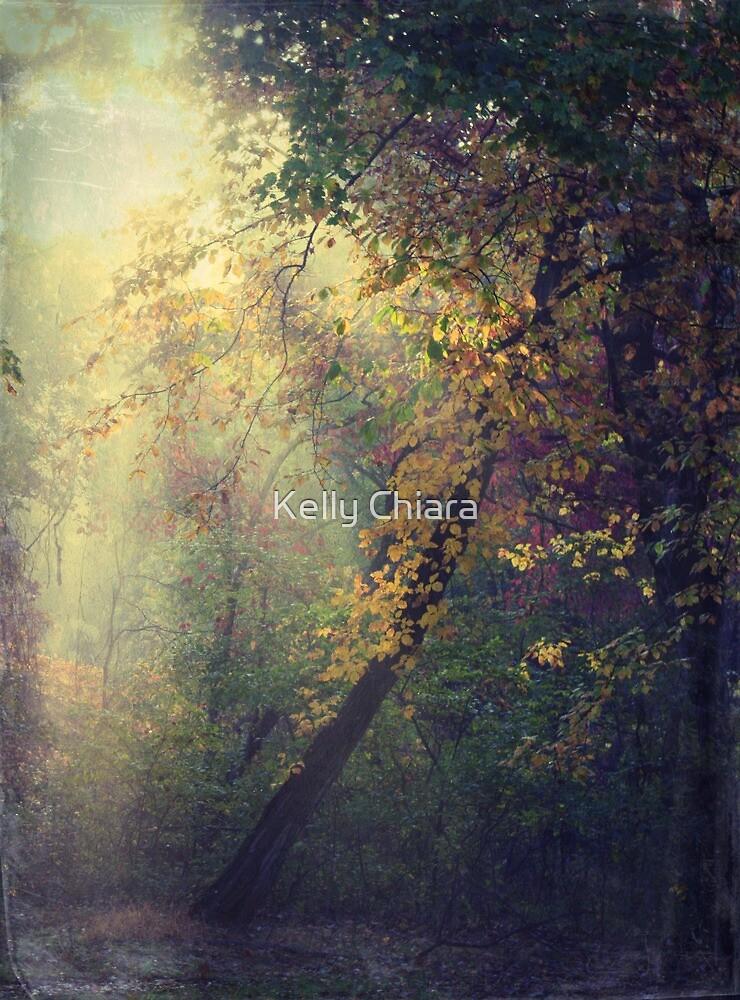 Dream a New Dream by Kelly Chiara