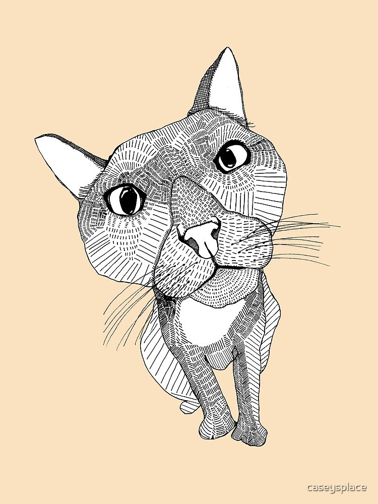 Bigface Cat by caseysplace