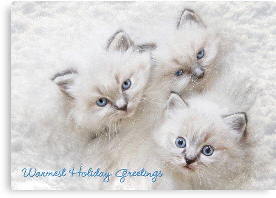 Warmest Holiday Greetings by Lori Deiter