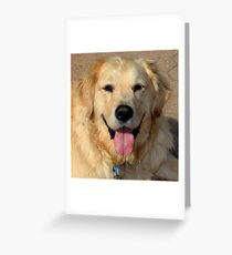 Healey With A Heart of Gold Greeting Card