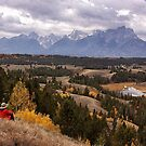 Oh What a View by Bill D. Bell