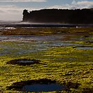 Rockpools and Climbers by JHP Unique and Beautiful Images
