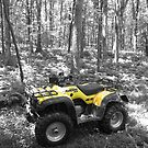 Yellow Quad Bike by spanners79
