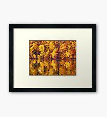 full of yellows Framed Print