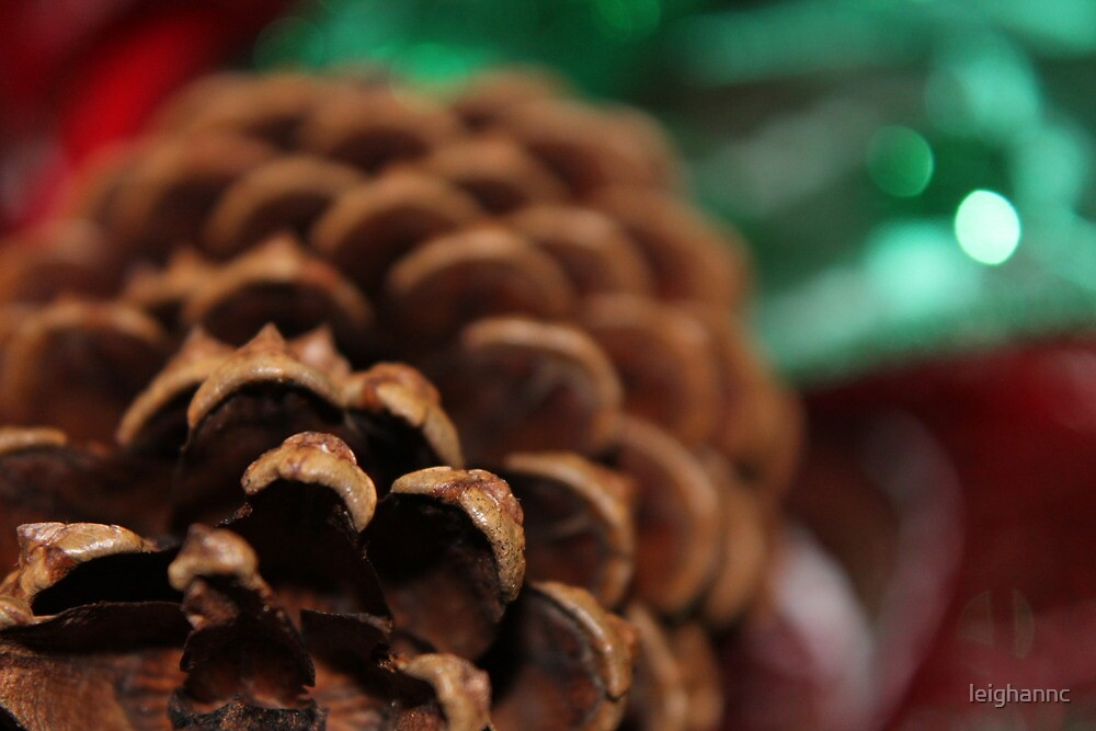 Pinecone Christmas by leighannc