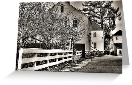 Neighborly by Carrie Blackwood