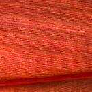 Red Hawaiian Leaf Close Up by pjwuebker