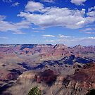 Grand Vista of the Grand Canyon by Nancy Richard