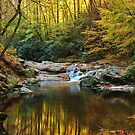 autumn in the falls by dc witmer