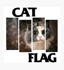 Cat Flag Photographic Print