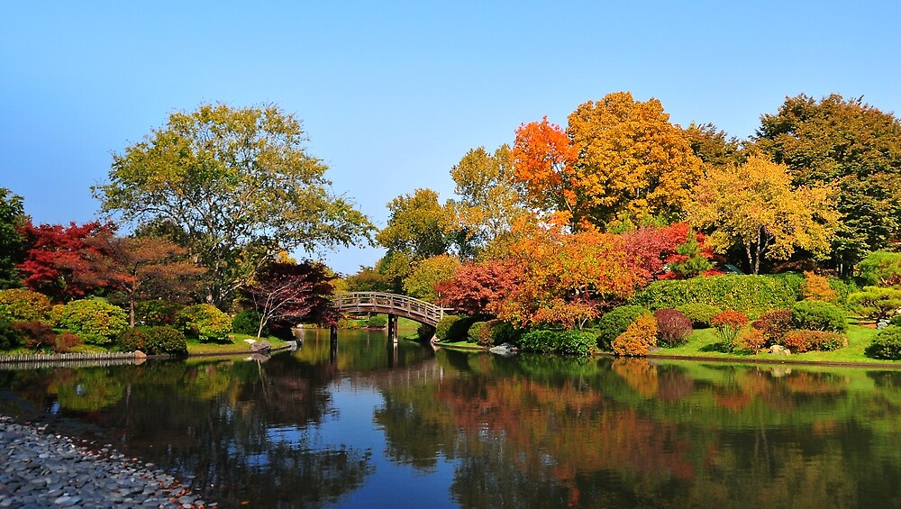 A Fall Walk by kentuckyblueman