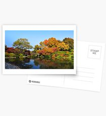 A Fall Walk Postcards