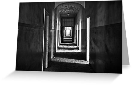 Within These Walls by Jill Fisher