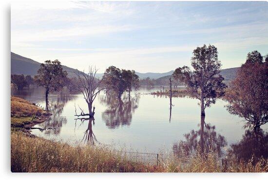 Lake Hume, Rural NSW by Sarah Moore