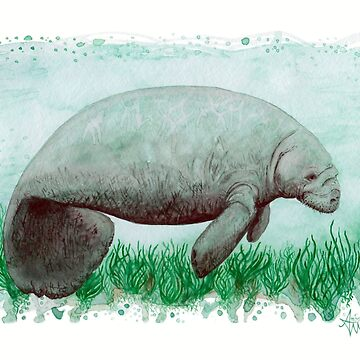 """The Manatee"" by Amber Marine ~ Watercolor painting, art © 2015 by AmberMarine"