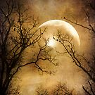 Into the night by John Rivera