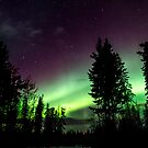 Nov 13th/12 Auroras #2 by peaceofthenorth