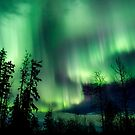 Nov 13th/12 Auroras by peaceofthenorth