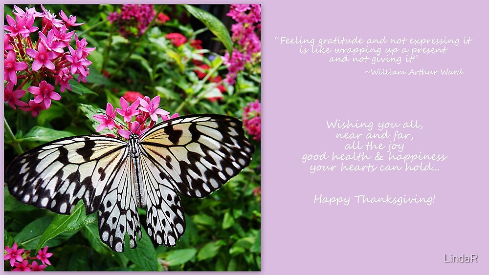 Giving Thanks... by LindaR