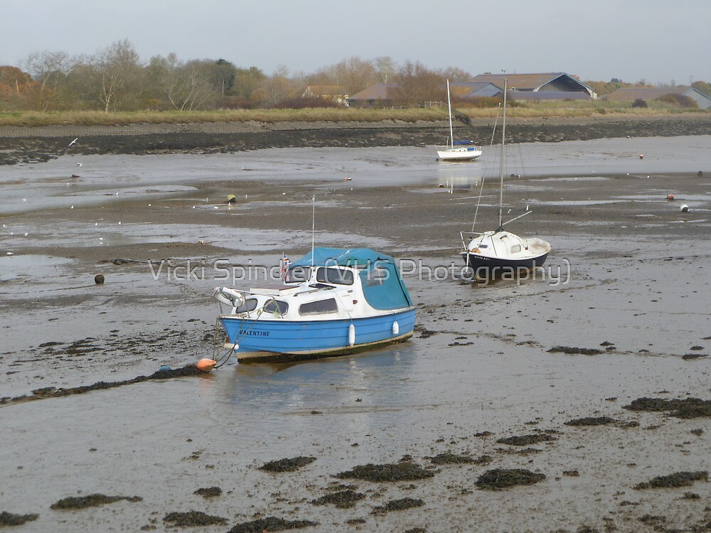 Low Tide by Vicki Spindler (VHS Photography)