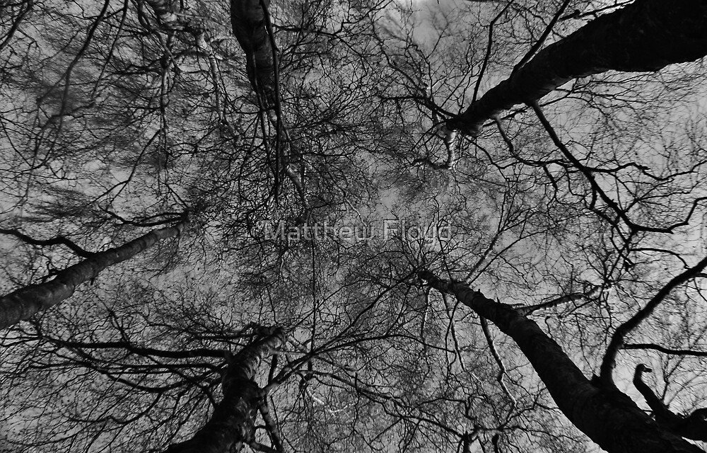 Where You Are - Black and White by Matthew Floyd