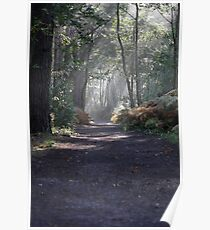 The Footpath Poster