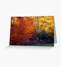 autumn treasure Greeting Card