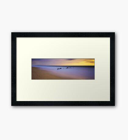 Sunlit Dicky - Caloundra Framed Print