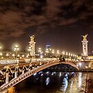 Alexander III bridge in Paris, France at night  by hpostant