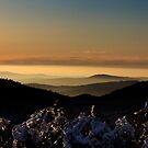 Sunset at Mt Buller by Roberts Birze