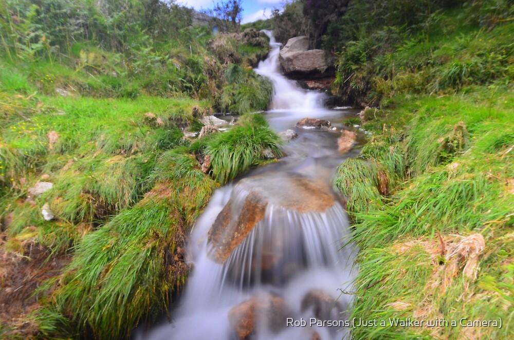 Dartmoor: Lud Brook by Robert Parsons