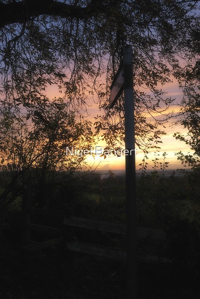 Nazeing Sunset by Nigel Bangert