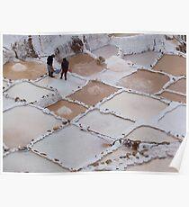 Salt Ponds, Maras Poster