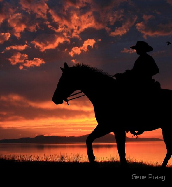 Cowboy Sunset by Gene Praag
